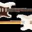 SIGMA-SSH White Blonde Birdseye Maple on Macassar Ebony Neck